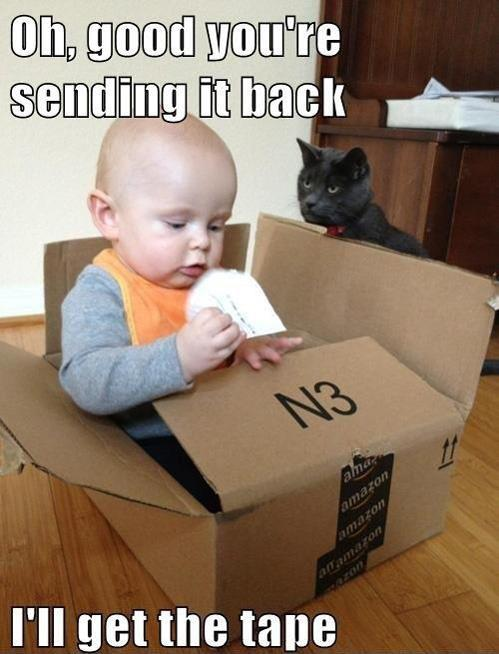 cat, baby, box, send the baby back